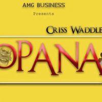 Criss Waddle Opana Shatta Wale Diss Prod By Unkle Beatz