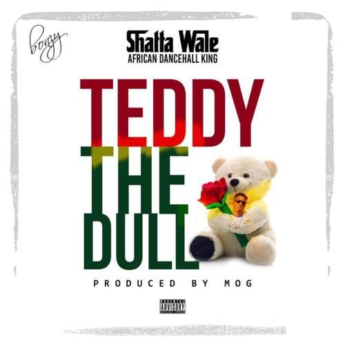 Shatta Wale Teddy