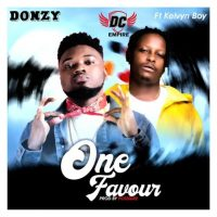Download Donzy