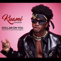 Kuami Eugene Dollar On You