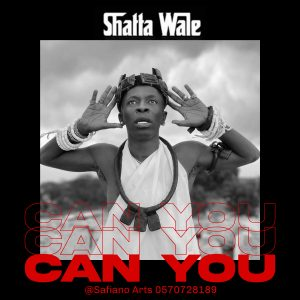 Shatta Wale Can You