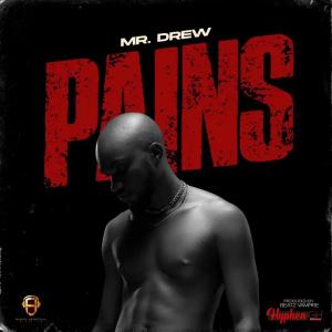 Mr Drew Pains