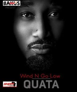 Quata-Wind-N-Go-Low-DisturbingGH.com_