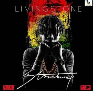 Stonebwoy - Slow Down