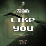 Shatta Wale – Like You (Prod By Shatta Wale)