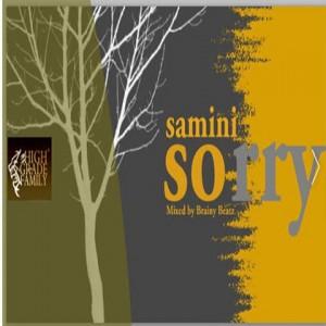 Samini - Sorry (Justin Bieber cover) mixed by brainy beatz