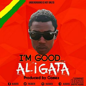 Aligata - I'm Good(Prod. by Gomez)