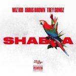 Wizkid – Shabba Ft Chris Brown, Trey Songz, French Montana