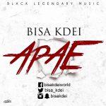 Bisa Kdei – Apae(Prod. By Master Garzy)