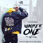 Yaa Pono – Number One In Africa (Amendwo) (Prod. by Jay Twist)