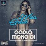 Wisa Greid – Aapla Moko Bi (Prod. By Jeri Beat)