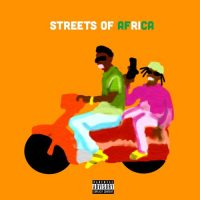 Burna Boy – Streets Of Africa 200x200 - Burna Boy - Streets Of Africa