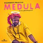 Rudebwoy Ranking – Medula (Prod. by CaskeysOnit)