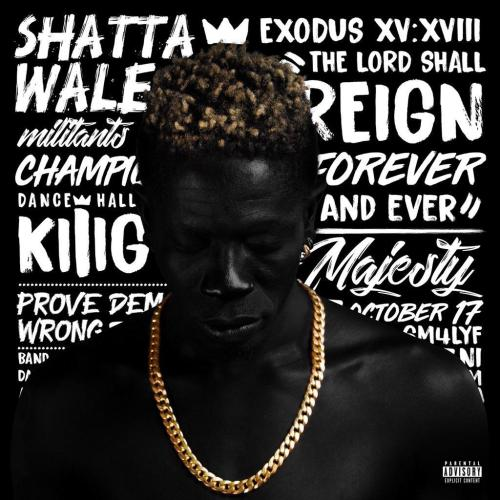 Shatta Wale - If I See You