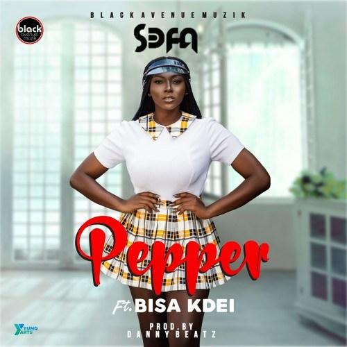 Sefa feat. Bisa Kdei – Pepper (Prod. by Danny Beatz)