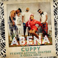 Cuppy abena cover