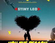 Stiny Leo - You The Reason (Prod. By Nana Beatz)
