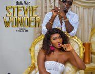 Wendy Shay – Stevie Wonder ft. Shatta Wale (Prod. by Mog Beatz x JMJ)